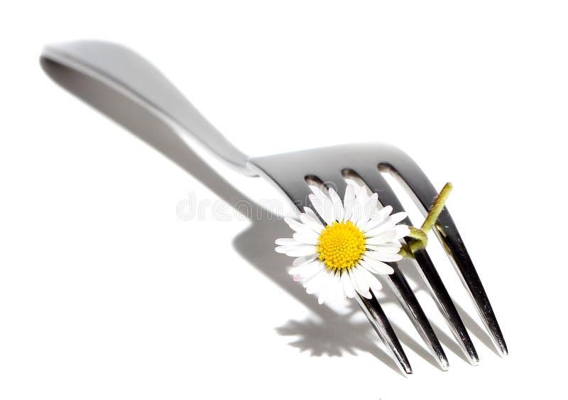 Gänseblümchen auf Gabel stockfotografie