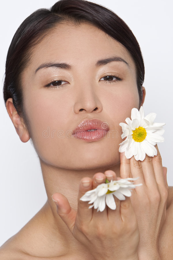 Gänseblümchen-Küsse stockbilder