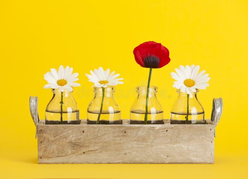 Gänseblümchen und Mohnblume blüht im Behälter mit kleinen Flaschen lizenzfreie stockbilder