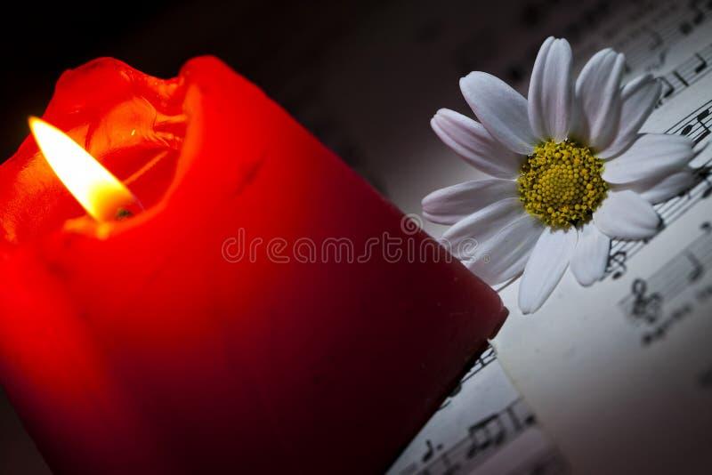 Gänseblümchen und rote Kerze auf Musik-Anmerkungs-Blatt stockfoto