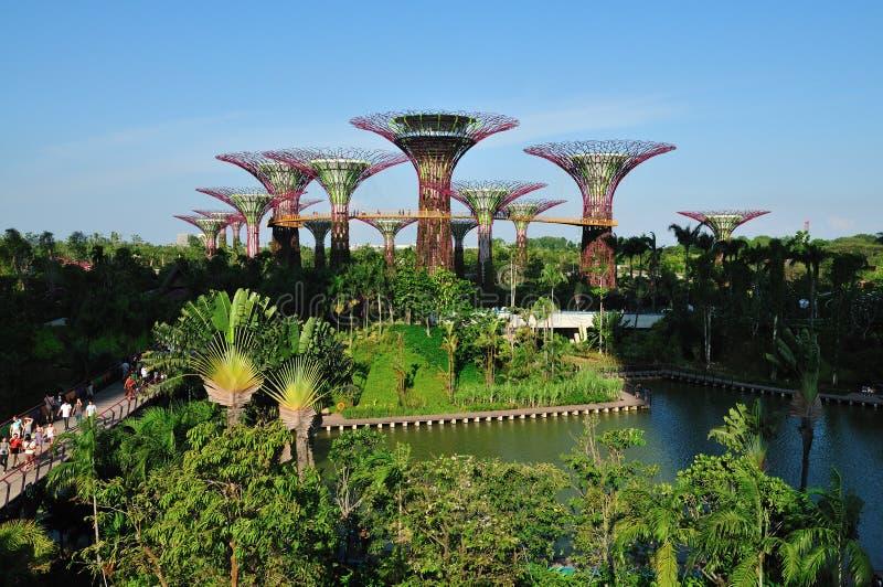 Gärten durch den Schacht lizenzfreie stockfotografie