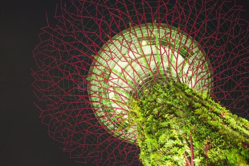 Gärten durch den Schacht, Singapur stockfotos