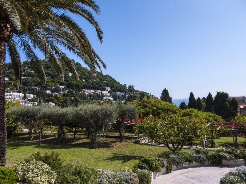 Gärten von La Certosa auf der Insel von Capri stockfotografie