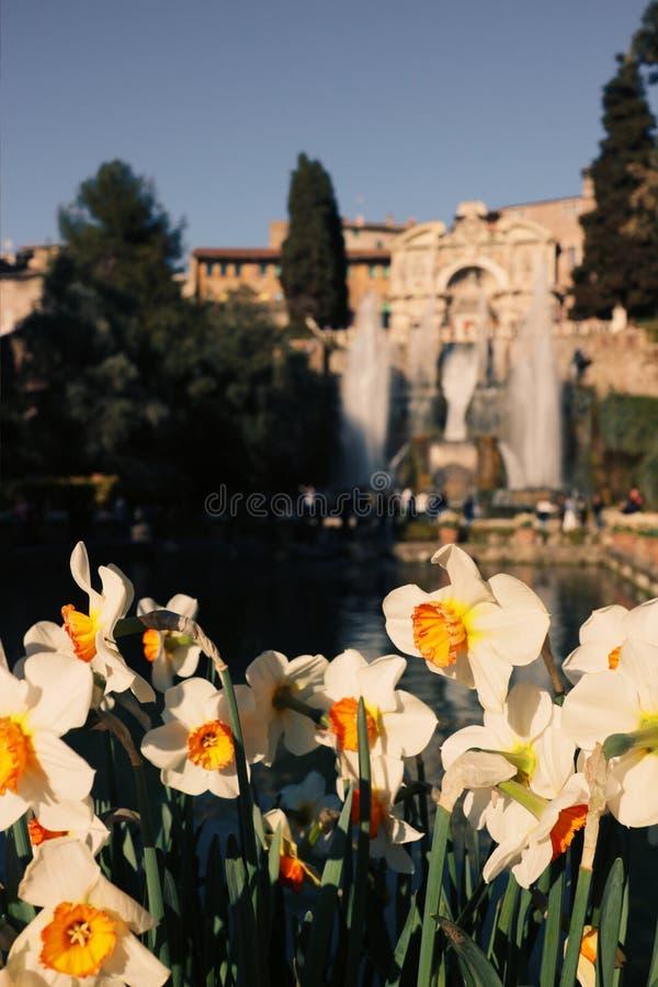 Gärten von Landhaus D 'Este stockfoto