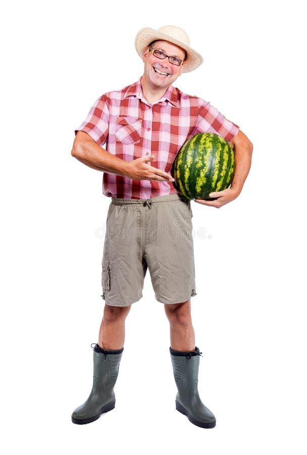 Gärtner bietet Wassermelone an lizenzfreies stockfoto