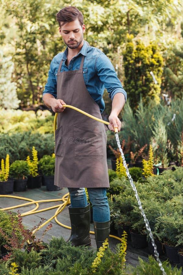 Gärtner in den Schutzblech- und Gummistiefelbewässerungsanlagen mit Berieselungsanlage im Garten lizenzfreie stockfotos
