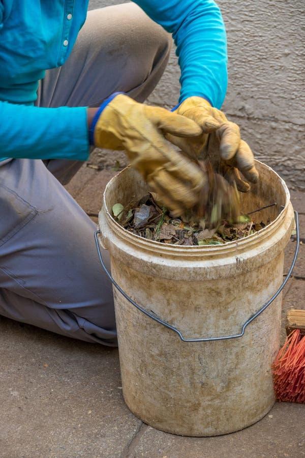 Gärtner, der die trockenen Blätter lokalisiert aufhebt stockfotografie