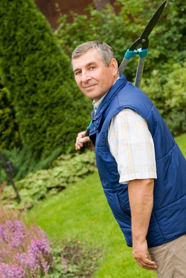 Gärtner des älteren Mannes schnitt eine Hecke stockfoto