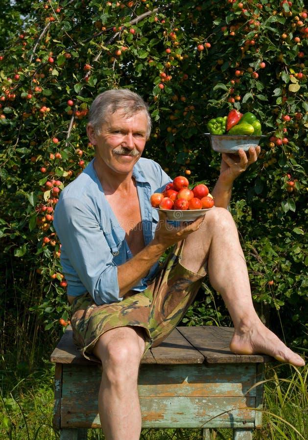 Gärtner mit Äpfeln und Gemüse 3 stockfotos