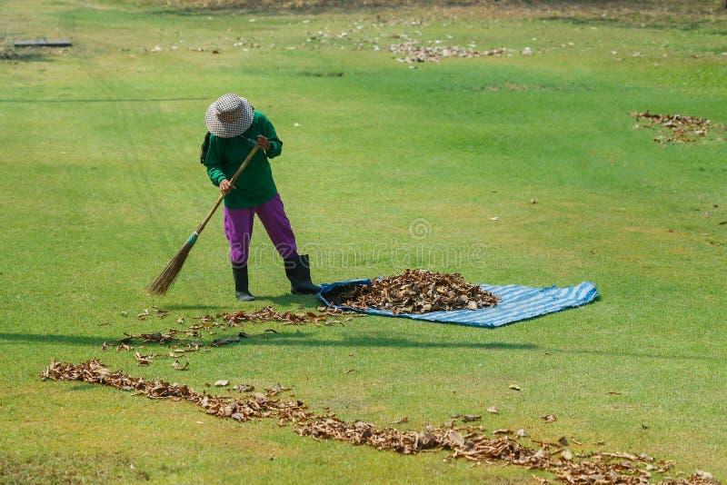 Gärtner Use eine Besen Blattschleife im Greensward stockfotos
