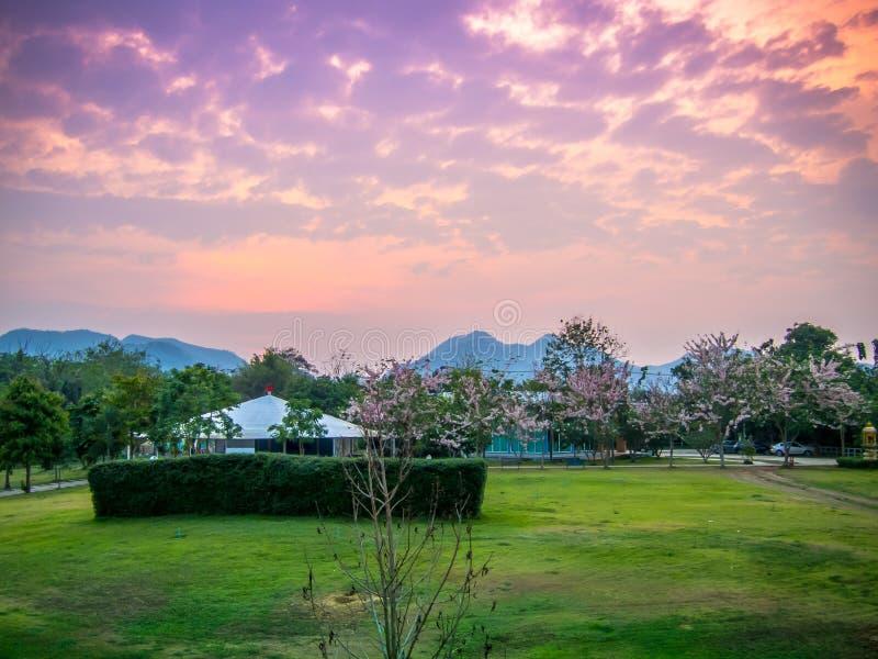 Gästehaus im rosa Himmelsonnenuntergang und -berg stockfotografie