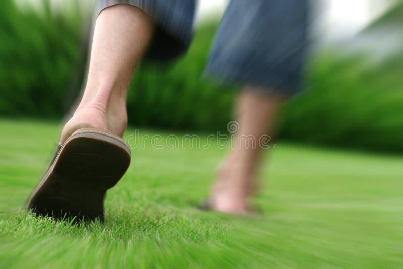 Download Gå arkivfoto. Bild av rörelse, hälsa, lawn, actinium, skor - 290184