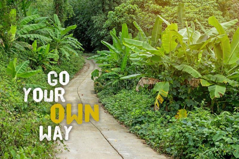 gå att egen långt ditt Välj din egen bana i liv och ta det långa väghemmet, vägen som resas mindre Undersök och erfara naturen arkivfoton