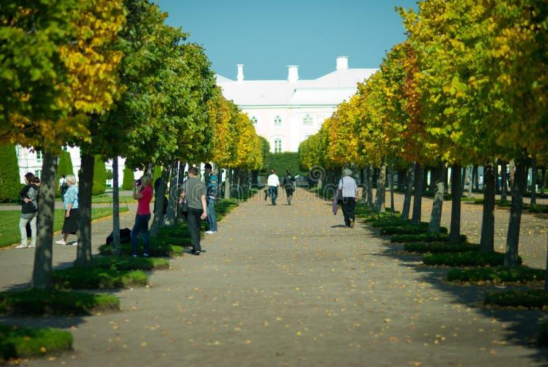 Gå av Peterhof fotografering för bildbyråer