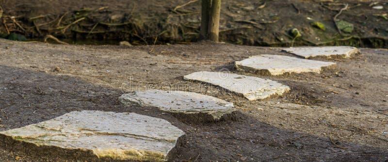 Gå bana som göras av stor stenar, trädgård eller naturgarneringar och arkitektur royaltyfri fotografi
