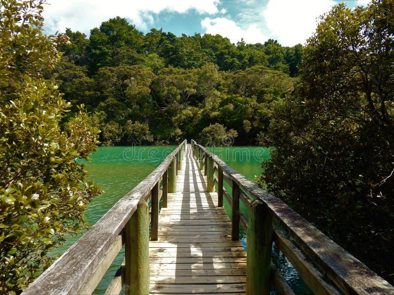 Gå bron i Nya Zeeland arkivfoton