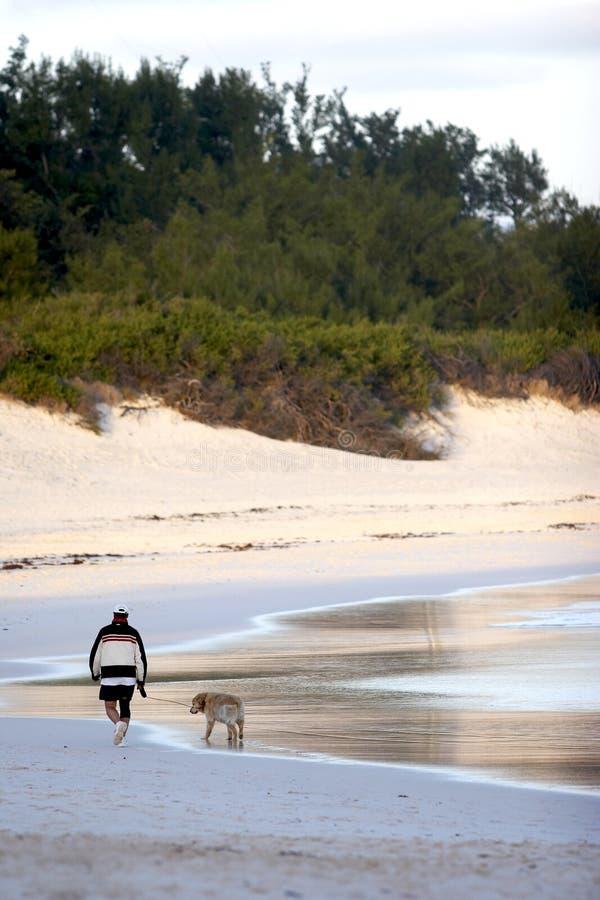 gå för strandhundman fotografering för bildbyråer