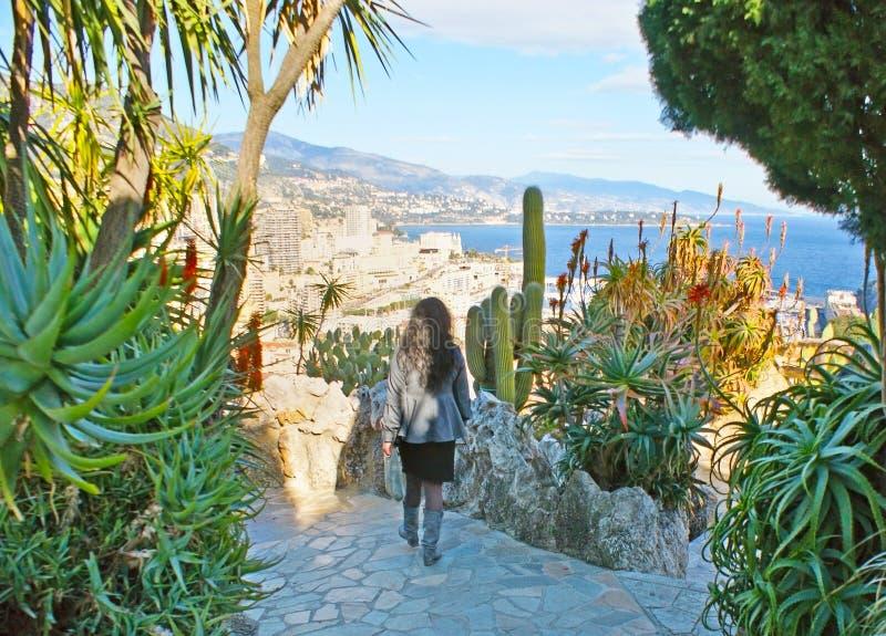 Gå i exotisk trädgård av Monaco fotografering för bildbyråer