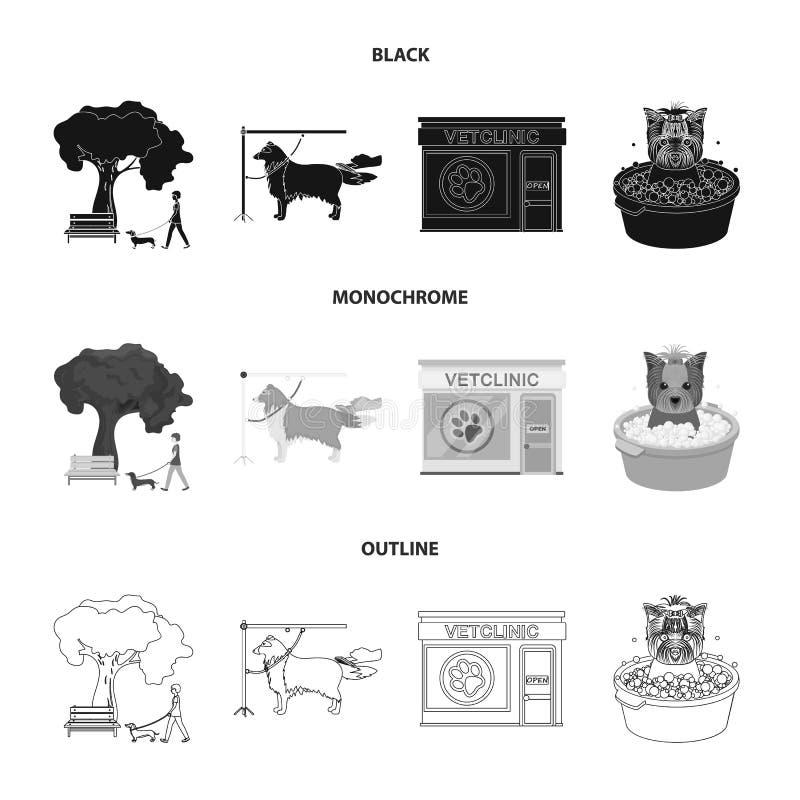 Gå med en hund i parkera som kammar en hund, ett veterinär- kontor för ` som s badar ett husdjur Veterinärklinik och uppsättning  vektor illustrationer