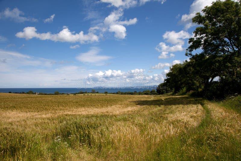Gå runt om Lligwy och Moelfre royaltyfri bild