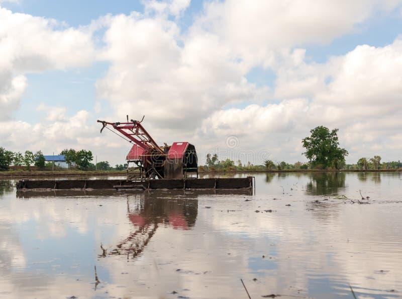 Gå traktor på risfältet för arbetsplogjordbruksmark som förbereds för jordbruks- odling arkivfoto