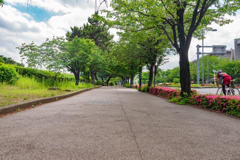gå vägen bredvid gammal stad för väg av den kyoto staden along på Kyoto, Japa royaltyfri foto