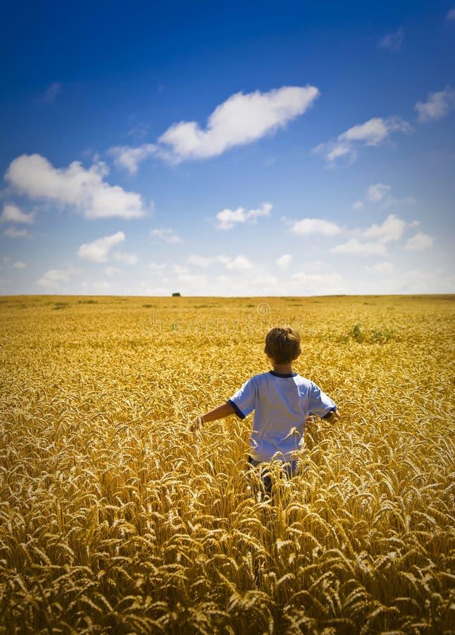gå vete för pojkefält arkivbild