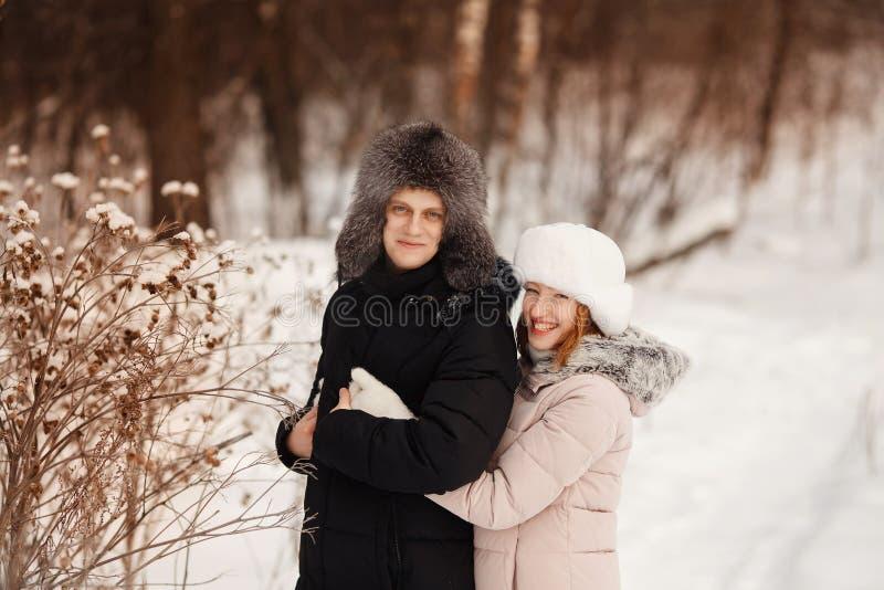 gå vinter för hund att älska par är att gå i snö arkivbild