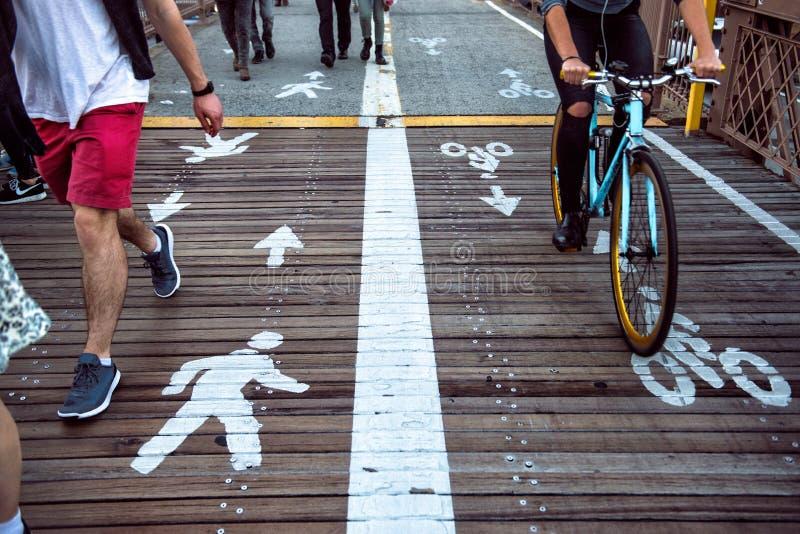 Gångare- och cykelryttare som delar gatagränderna med vägmarkeringen i staden arkivfoton