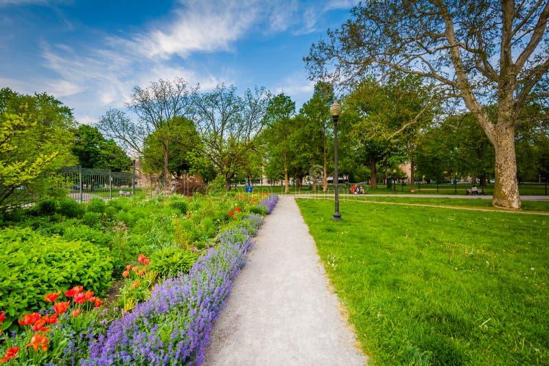 Gångbana och trädgårdar på Allan Gardens, i det trädgårds- området arkivbild