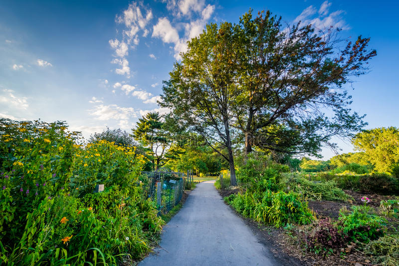 Gångbana och trädgårdar på tillbaka fjärdkärr, i Boston, Massachusetts royaltyfria bilder