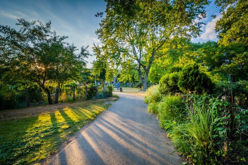 Gångbanan och trädgårdar på solnedgången, på tillbaka fjärdkärr, i Boston, samlas royaltyfria bilder
