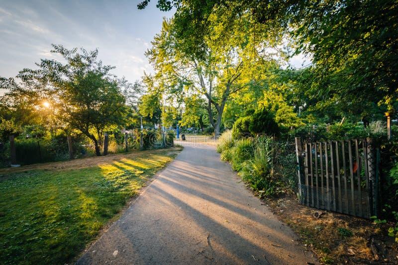 Gångbanan och trädgårdar på solnedgången, på tillbaka fjärdkärr, i Boston, samlas arkivfoto