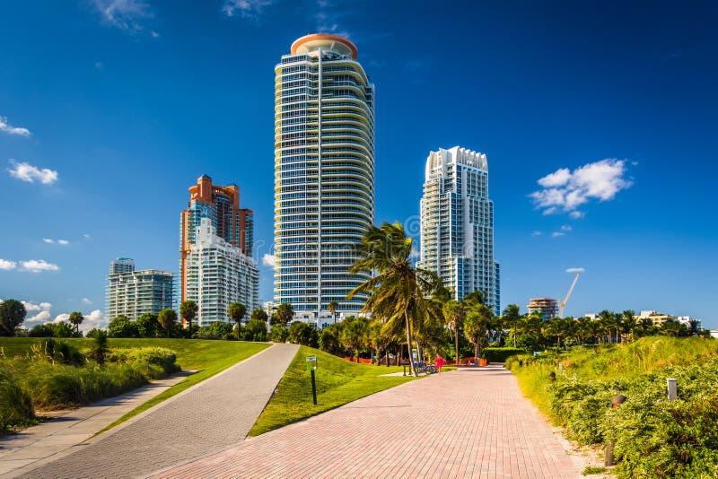 Gångbanor på södra Pointe parkerar och skyskrapor i Miami Beach, Fl royaltyfria foton