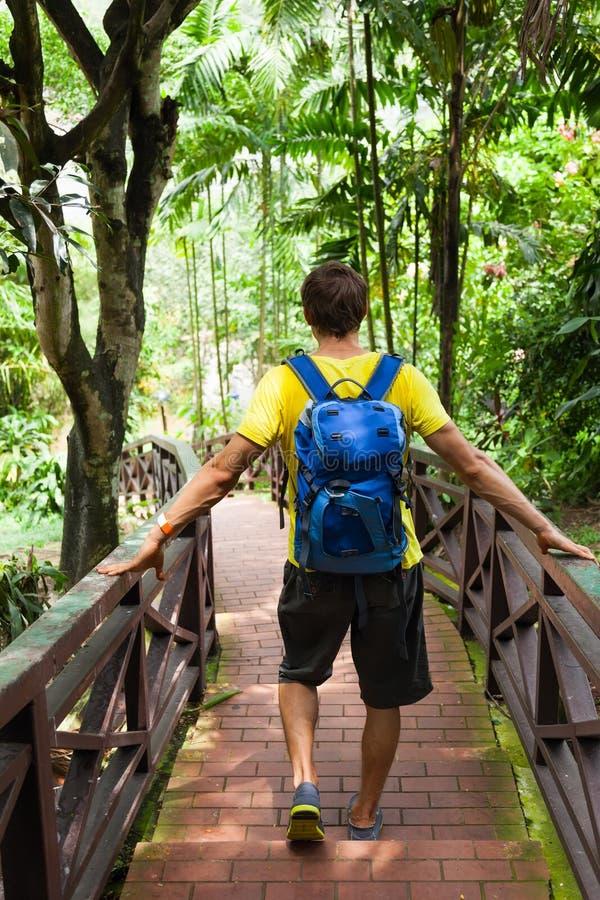 Går ryggsäcken för den bakre sikten för handelsresanden djungelgräsplan royaltyfri fotografi