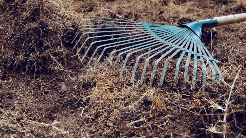 Gårdarbete, förberedelsejord i trädgård med krattar royaltyfri foto