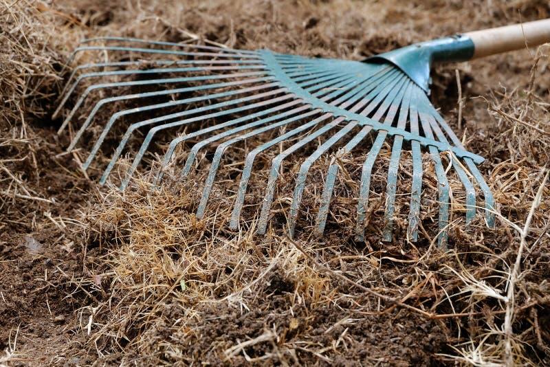 Gårdarbete, förberedelsejord i trädgård med krattar arkivbild
