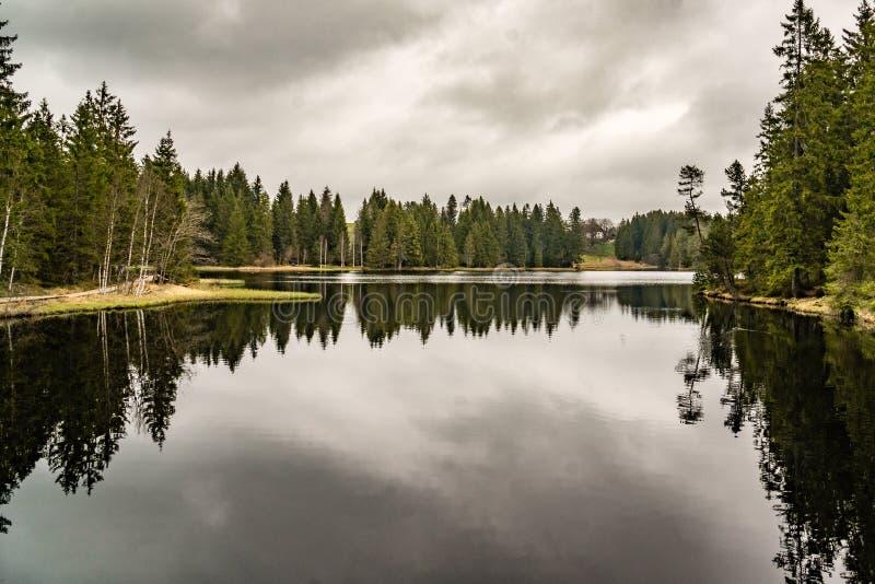 Gåta sjö med skogen, mörk vattenreflexion arkivfoto