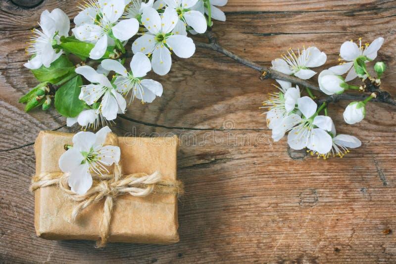 Gåvaask och en filial av att blomstra plommonet royaltyfria foton