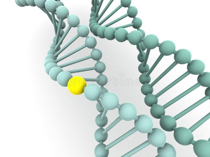 Gène en ADN illustration stock