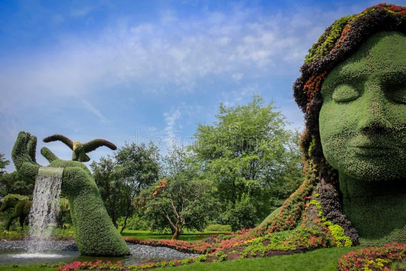 Géant végétal image stock