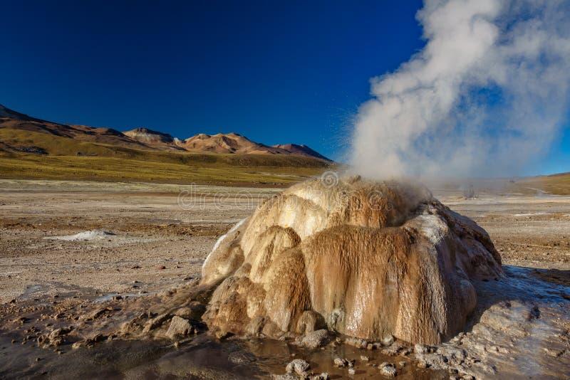 Géiser activo en el EL Tatio, Atacama imagen de archivo libre de regalías