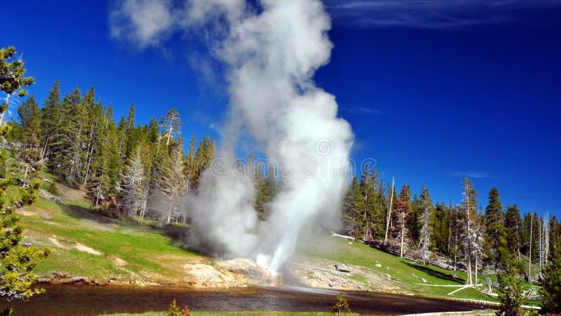 Géiser de la orilla. Parque nacional de Yellowstone fotos de archivo