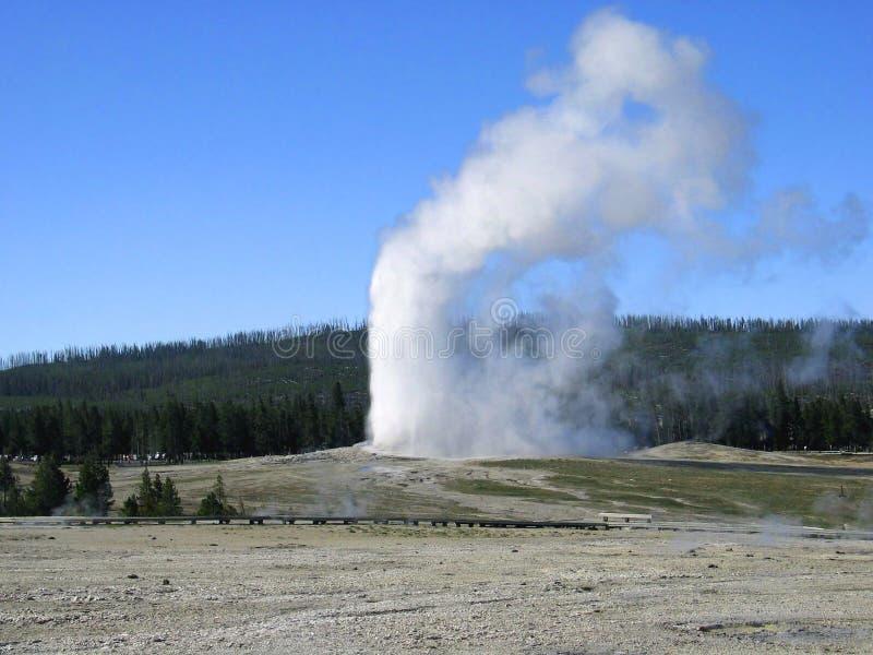 Géiser fiel viejo. Parque nacional de Yellowstone. Wyoming. fotos de archivo