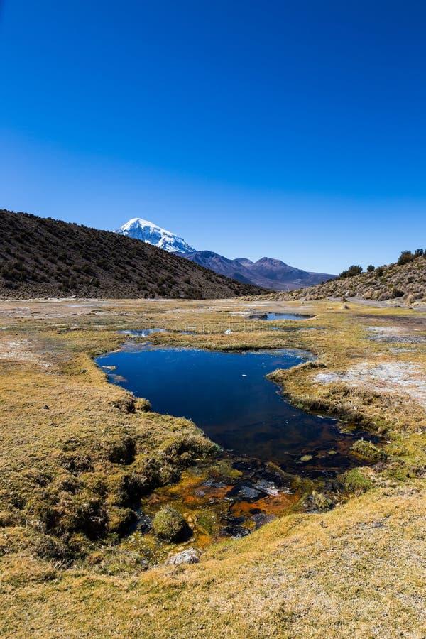 Géiseres de Junthuma, formados por actividad geotérmica bolivia imagen de archivo libre de regalías