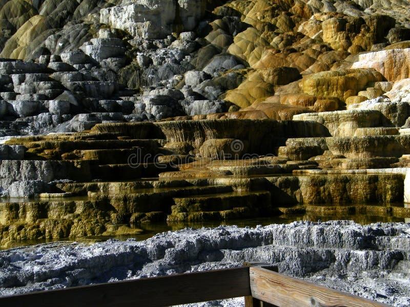 Géiseres 9 del parque nacional de Yellowstone imagenes de archivo