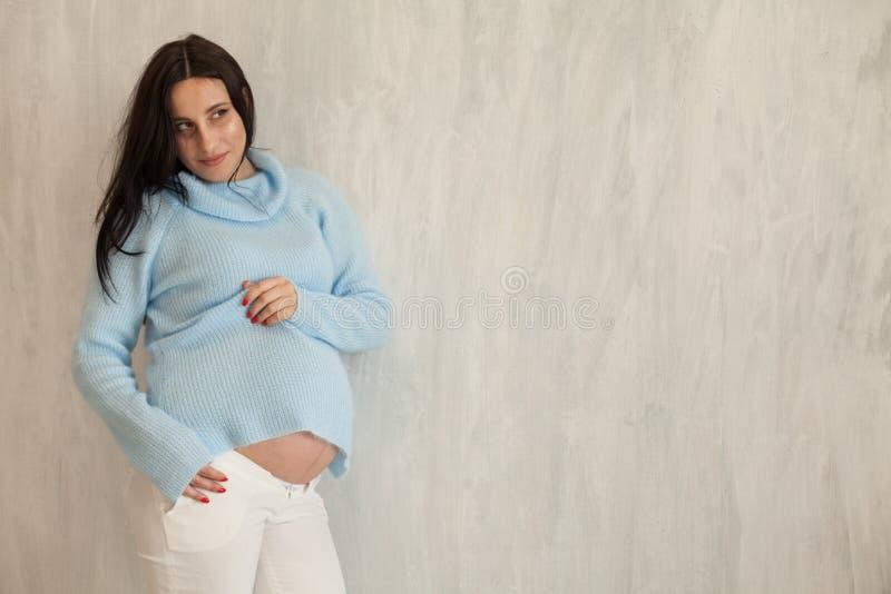 Géneros morenos hermosos del retrato de la mujer embarazada agradables imagen de archivo libre de regalías
