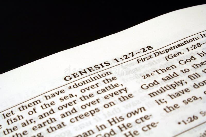 Génesis imagen de archivo