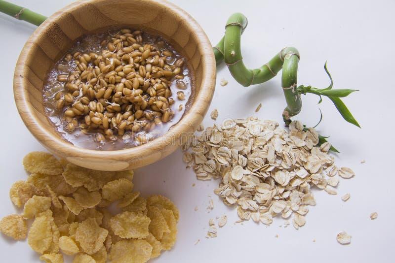 Gérmenes de trigo de Livw y diversas escamas fotos de archivo libres de regalías
