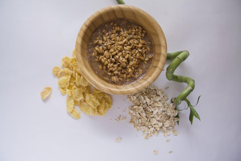 Gérmenes de trigo de Livw y diversas escamas fotos de archivo